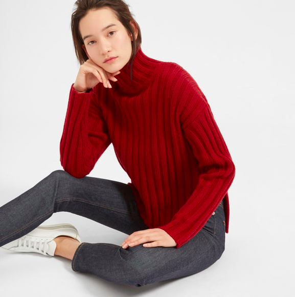 Everlane turtleneck sweater